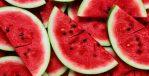 Nutrición para altas temperaturas